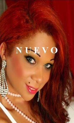 Travesti Shemale Vanessa Divineli Alicante/Alacant (Alicante)